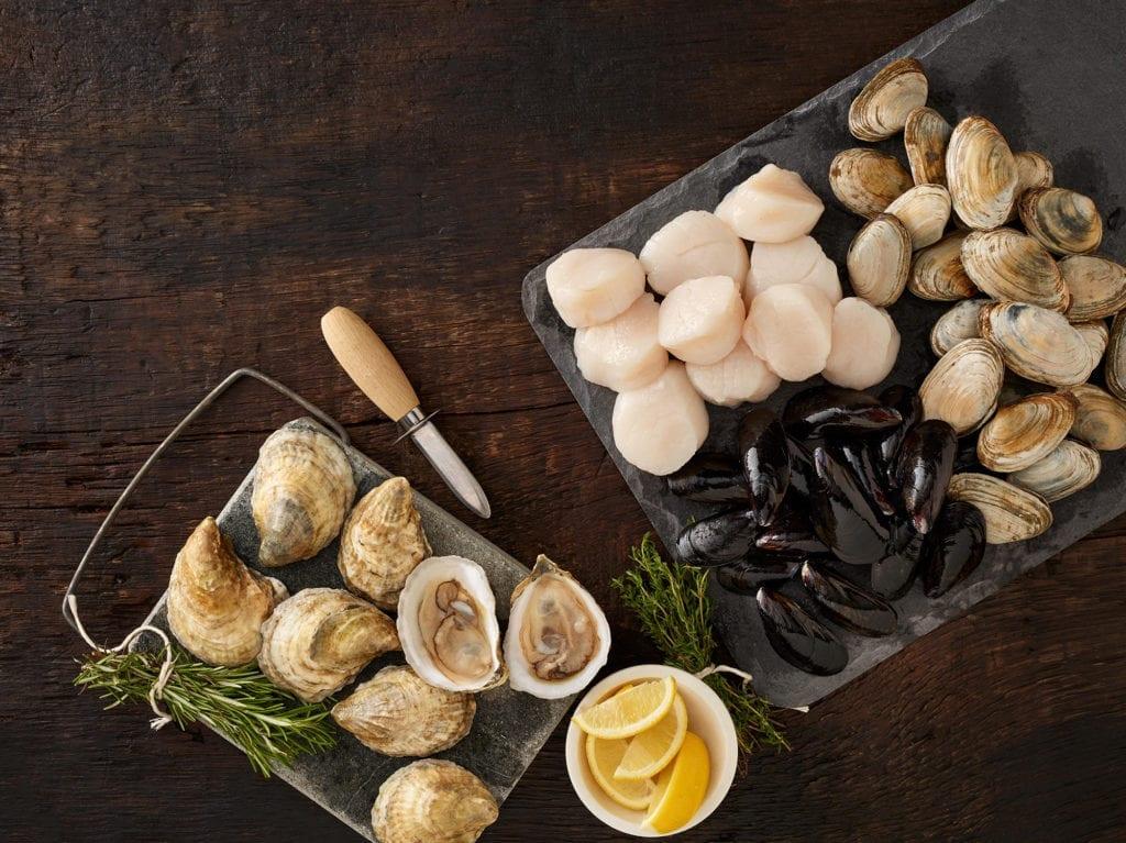 Fresh Maine shellfish